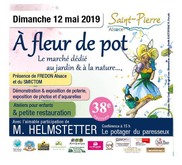 A fleur de pot Saint Pierre Xavière l'Aventurière 2019