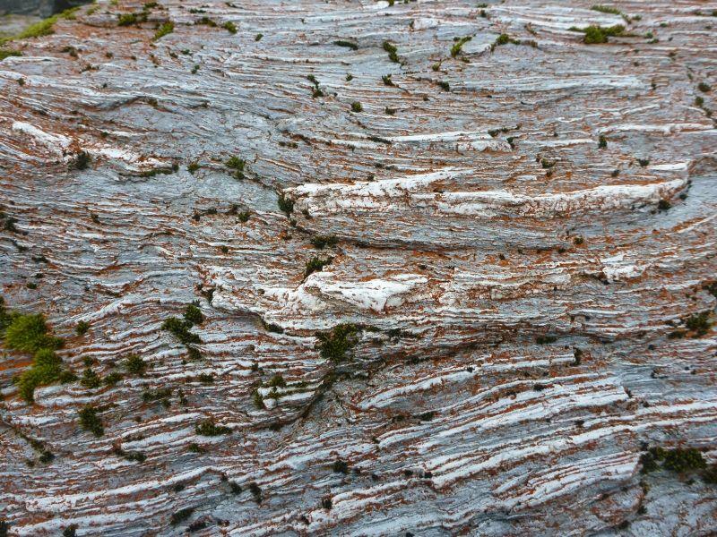 Franz Josef roche Xavière l'Aventurière