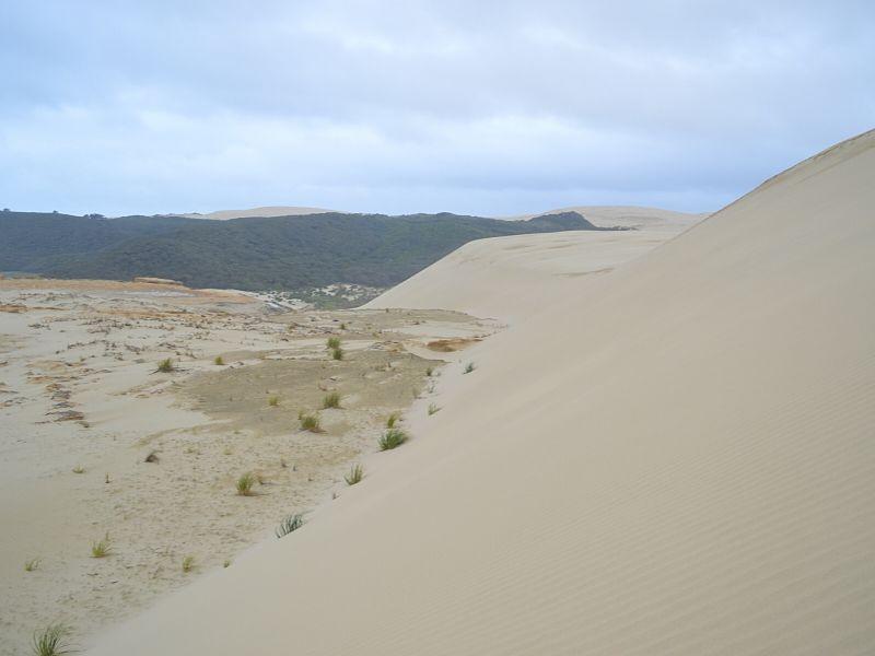 Xavière l'Aventurière Te Paki Nouvelle Zélande dune