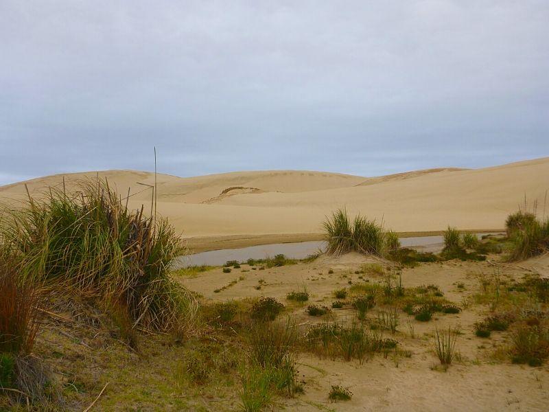 Xavière l'Aventurière Te Paki Nouvelle Zélande plage