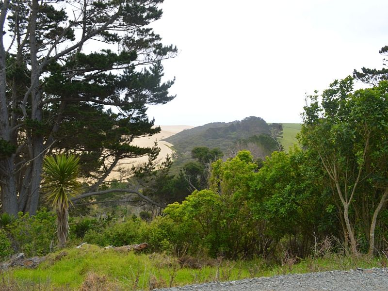 Xavière l'Aventurière Te Paki Nouvelle Zélande végétation