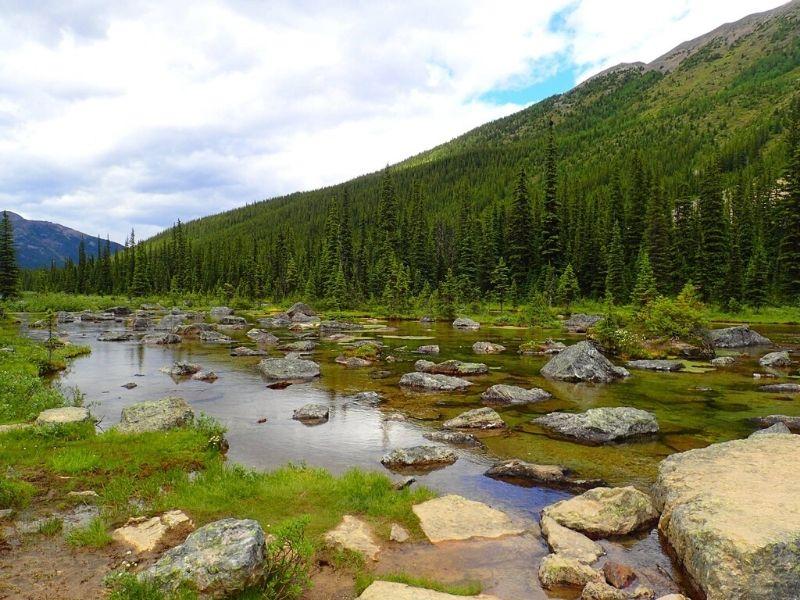Et si on méditait Xavière l'Aventurière ruisseau