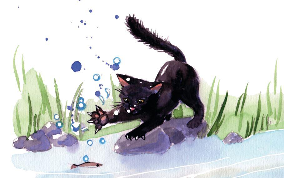 Mario eau journée internationale du chat noir Xavière l'Aventurière